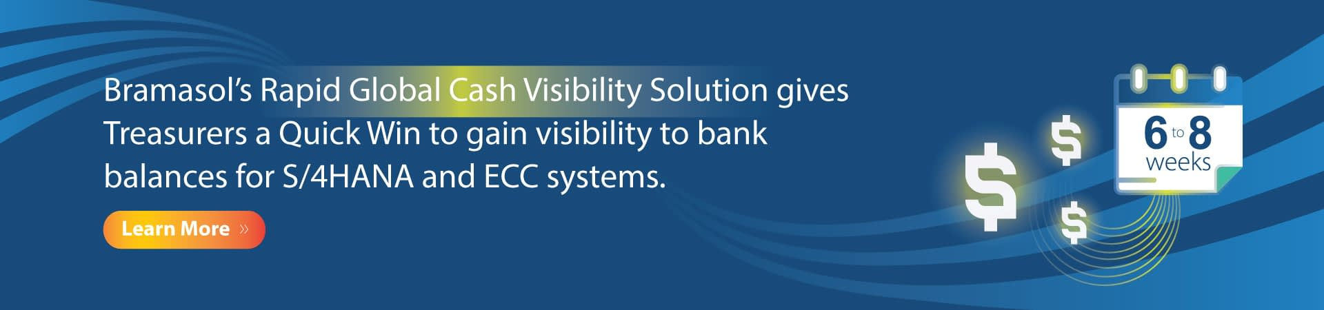 Rapid Global Cash Visibility Solution Banner